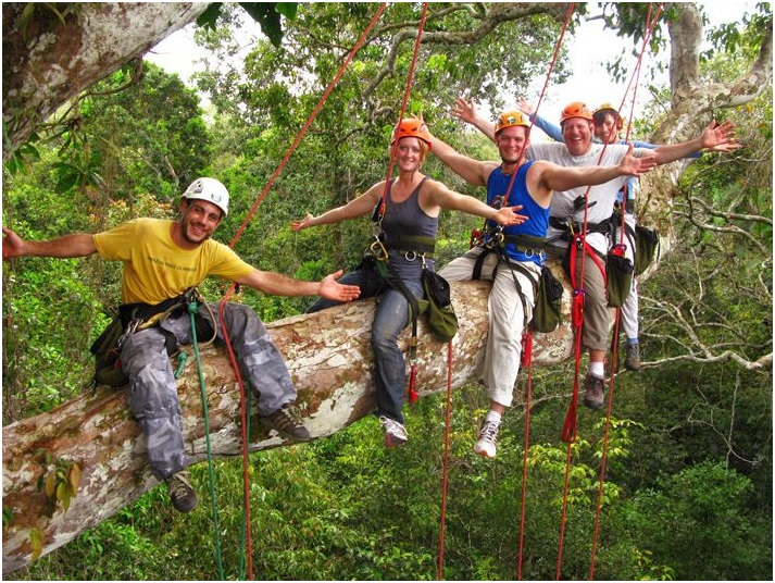Tree Climbing Tour in Manaus